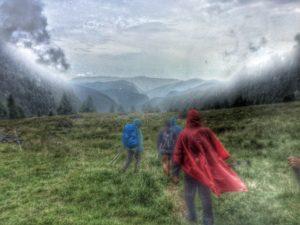 Cima del Frate - Val di Rava - Foto Omar Ropelato (8)