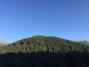 Forest Bathing in Valsugana e sul Lagorai